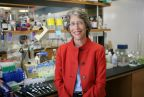 Dr. Katherine Hajjar. Photo credit: Robert Essel