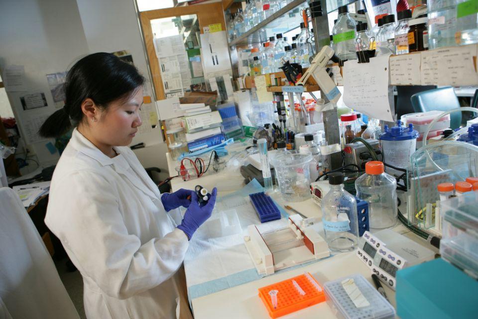 Biochemistry and Molecular Biology - PhD | Faculty of Graduate Studies | University of Calgary