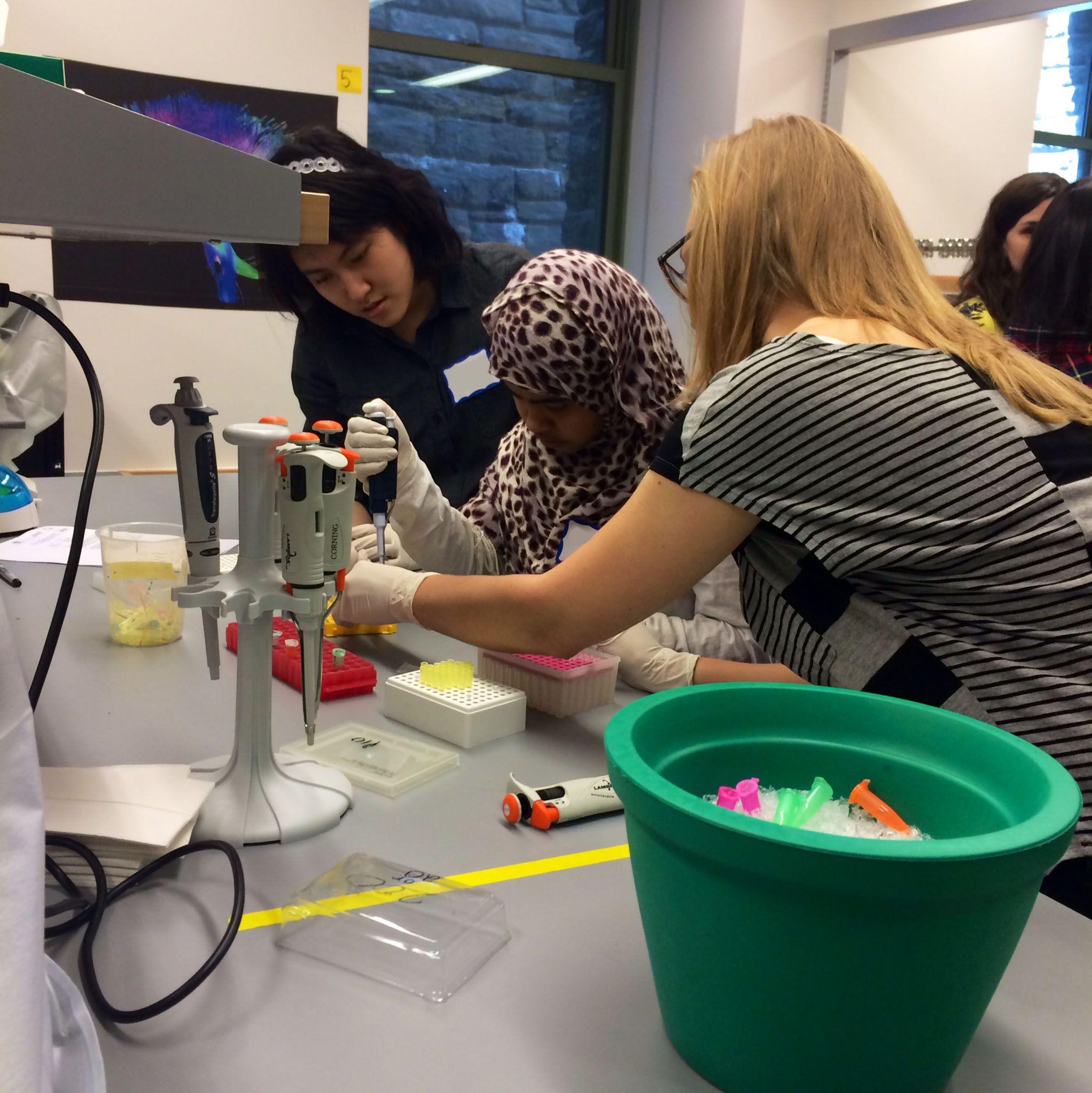 Stem School York: Graduate School Of Medical Sciences