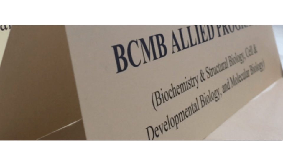 Biochemistry and Structural Biology (BSB), Cellular and Developmental Biology (CDB) and Molecular Biology (MB) Ph.D. programs