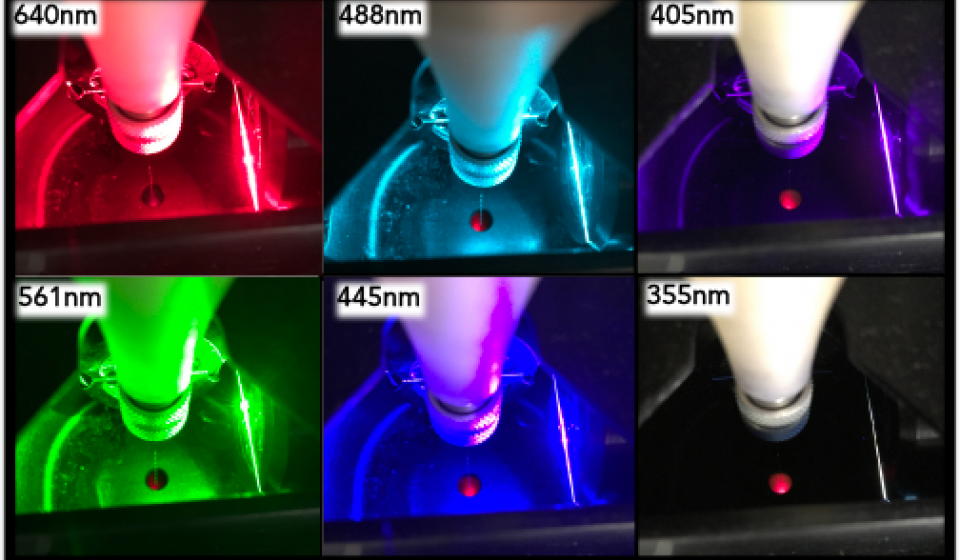 Lasers excite different fluorochromes