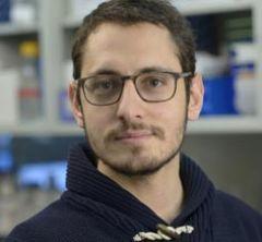 Theodore Giavridis